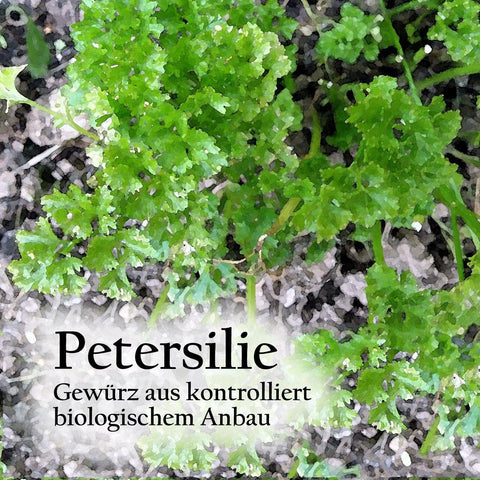 Petersilie. [30g]