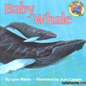 Baby Whale (Reading Railroad)