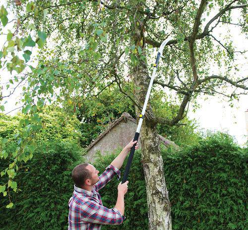 Extendable Pruning Saw