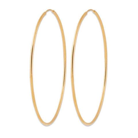 Hoop No 6 Earrings