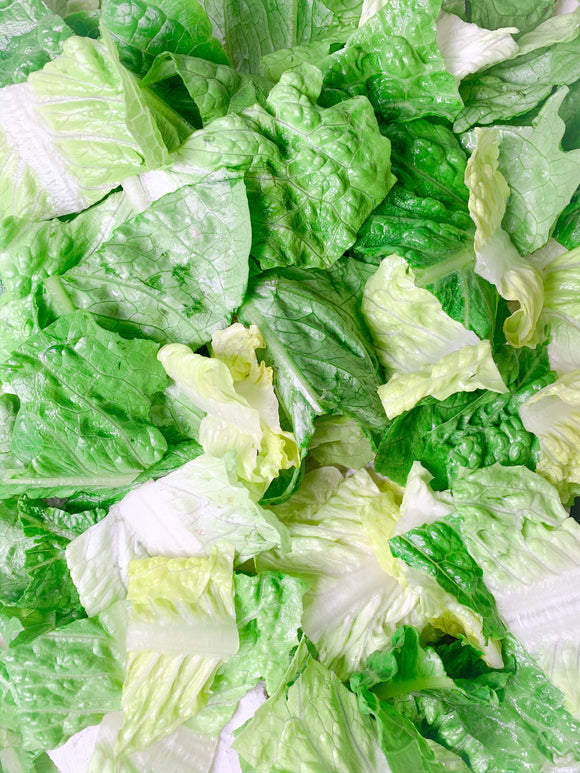 Romaine Lettuce Org. Bunch