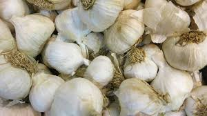 Garlic Org. 0.5 lb