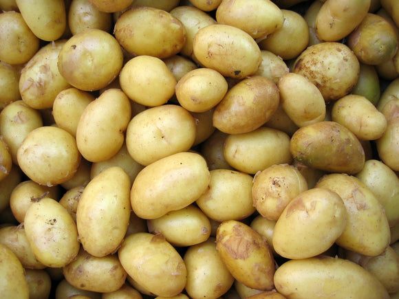 Potatoes Yellow Org. 2lb