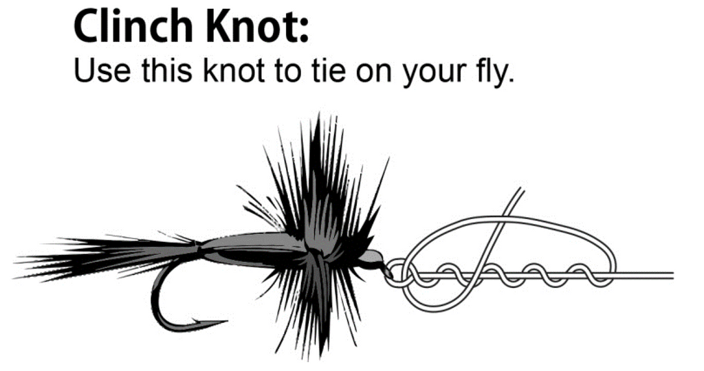 Wild Water Fly Fishing Clinch Knot