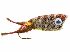 Wild Water Fly Fishing Deer Hair Brown Frog Popper, Size 2, Qty. 2