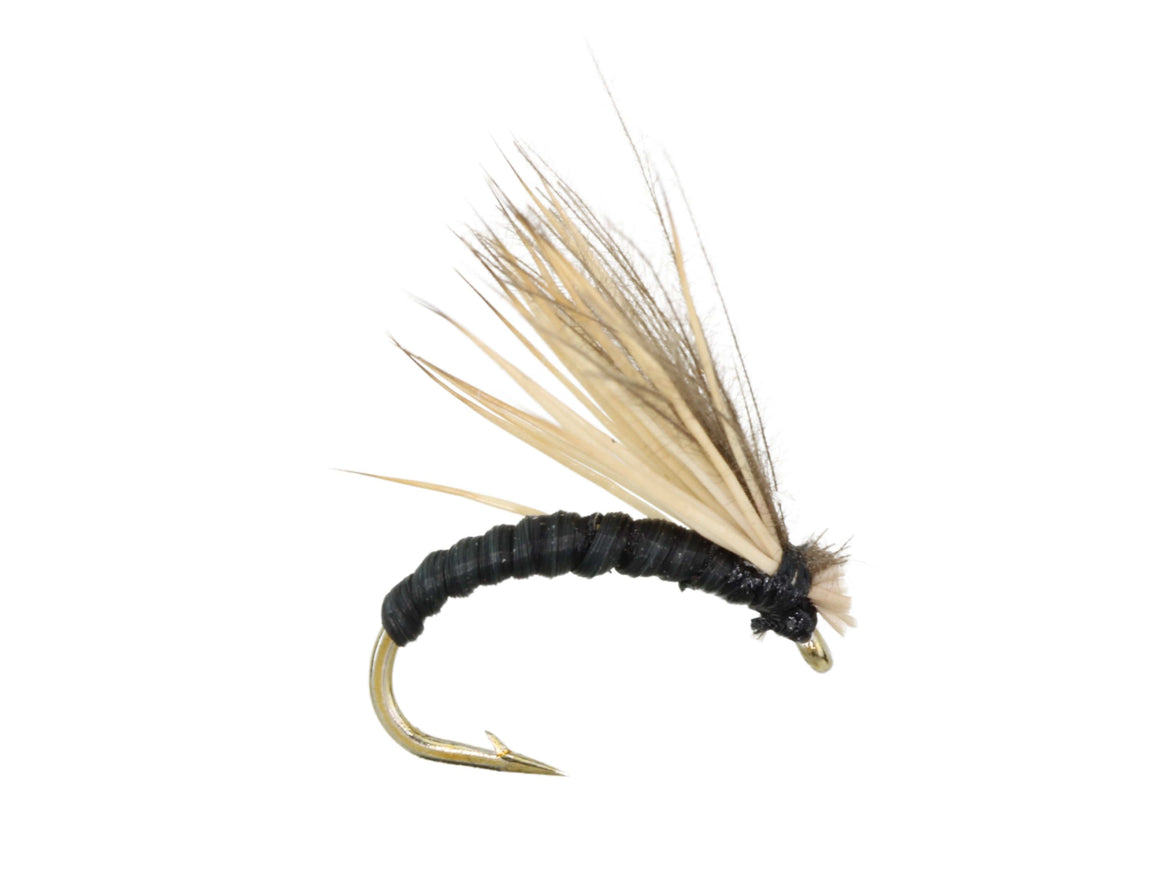 Black Elkwing Caddis Dry Fly Pattern | Wild Water Fly Fishing