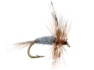 Adams Fly | Wild Water Fly Fishing