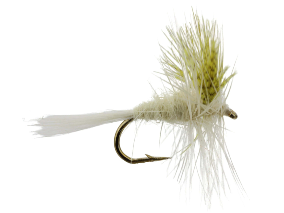 Light Cahill Dry Fly Pattern | Wild Water Fly Fshing