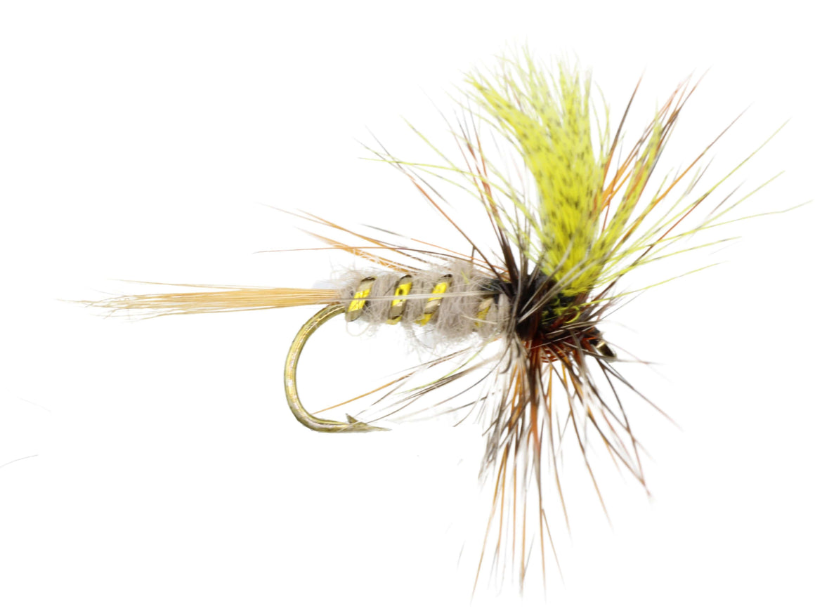 March Brown Fly | Wild Water Fly Fishing