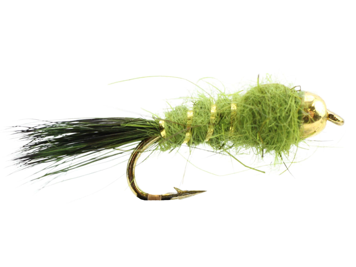 Wild Water Fly Fishing Bead Head Olive Flashback Nymph, Size 12, Qty. 6