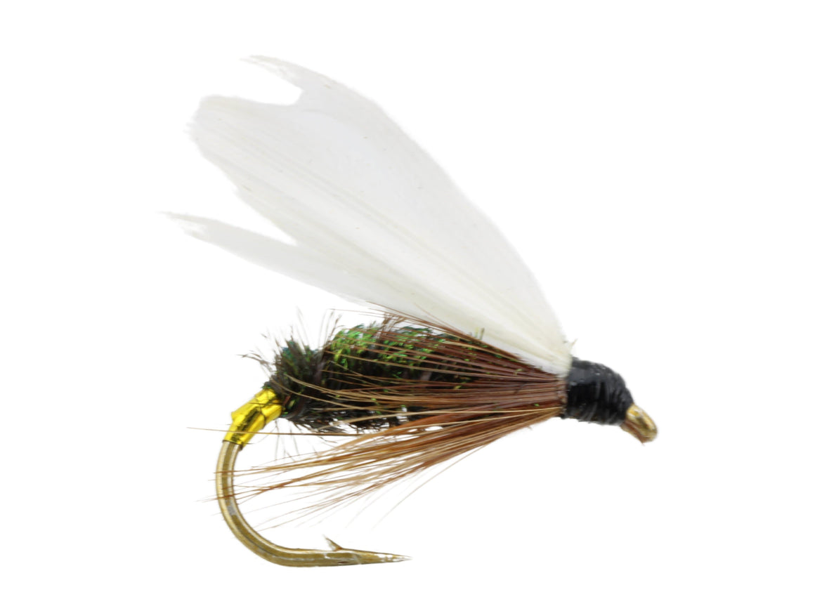 Winged Coachman Fly | Wild Water Fly Fishing