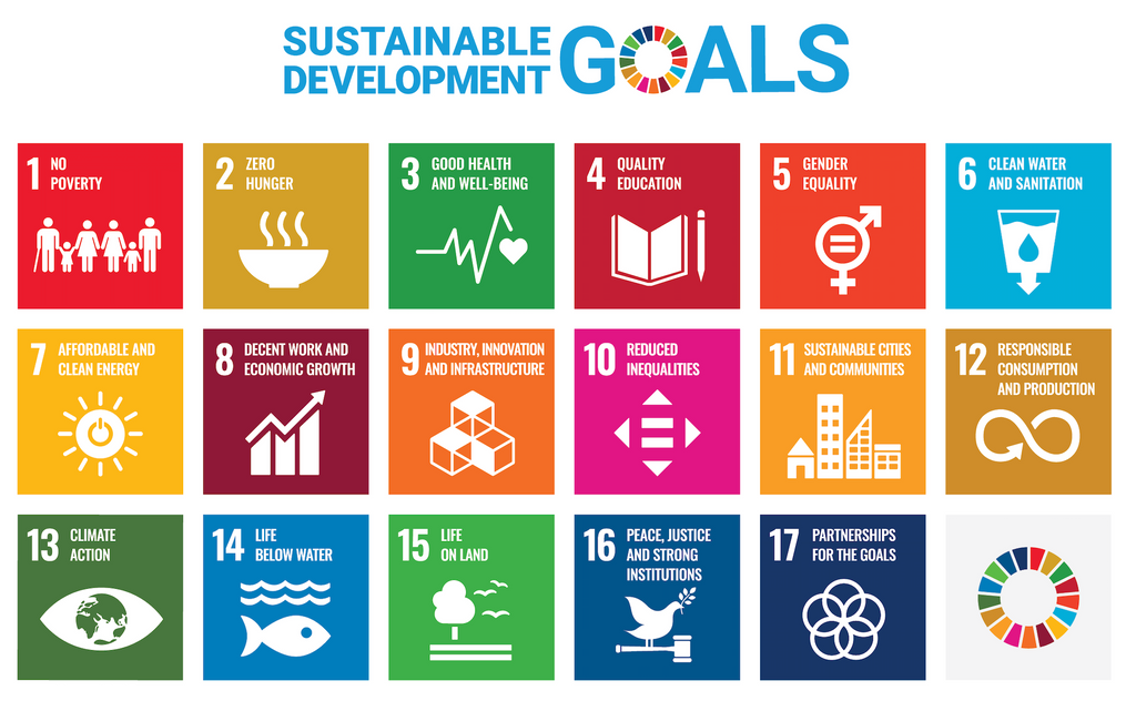 the UNS sustainable development goals