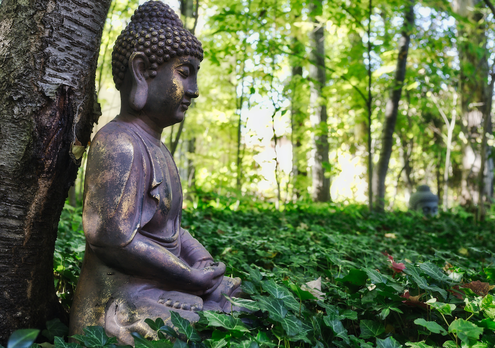 Buddha under a tree