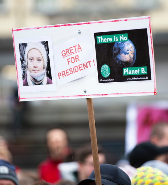 greta thunberg sign