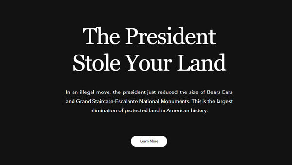 Patagonia website protest