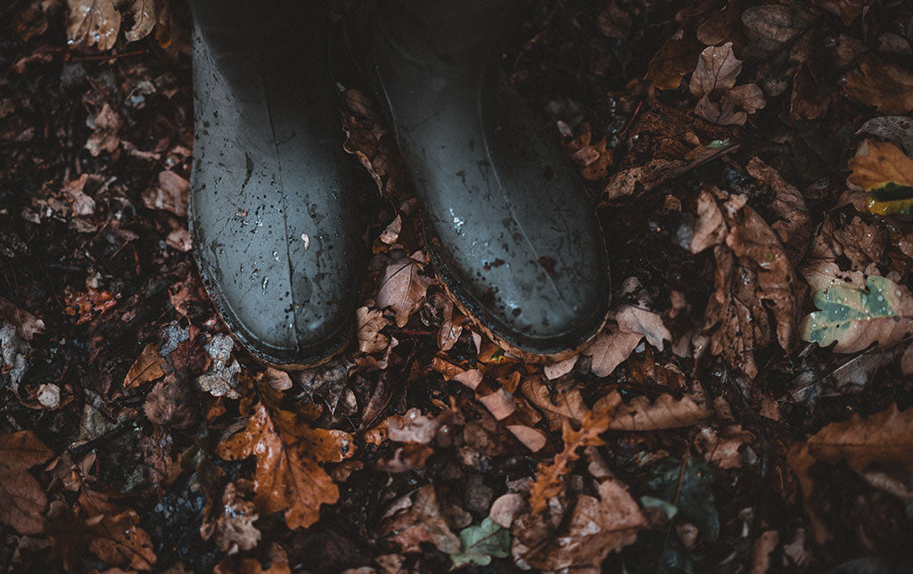 leaves and a wellington boot