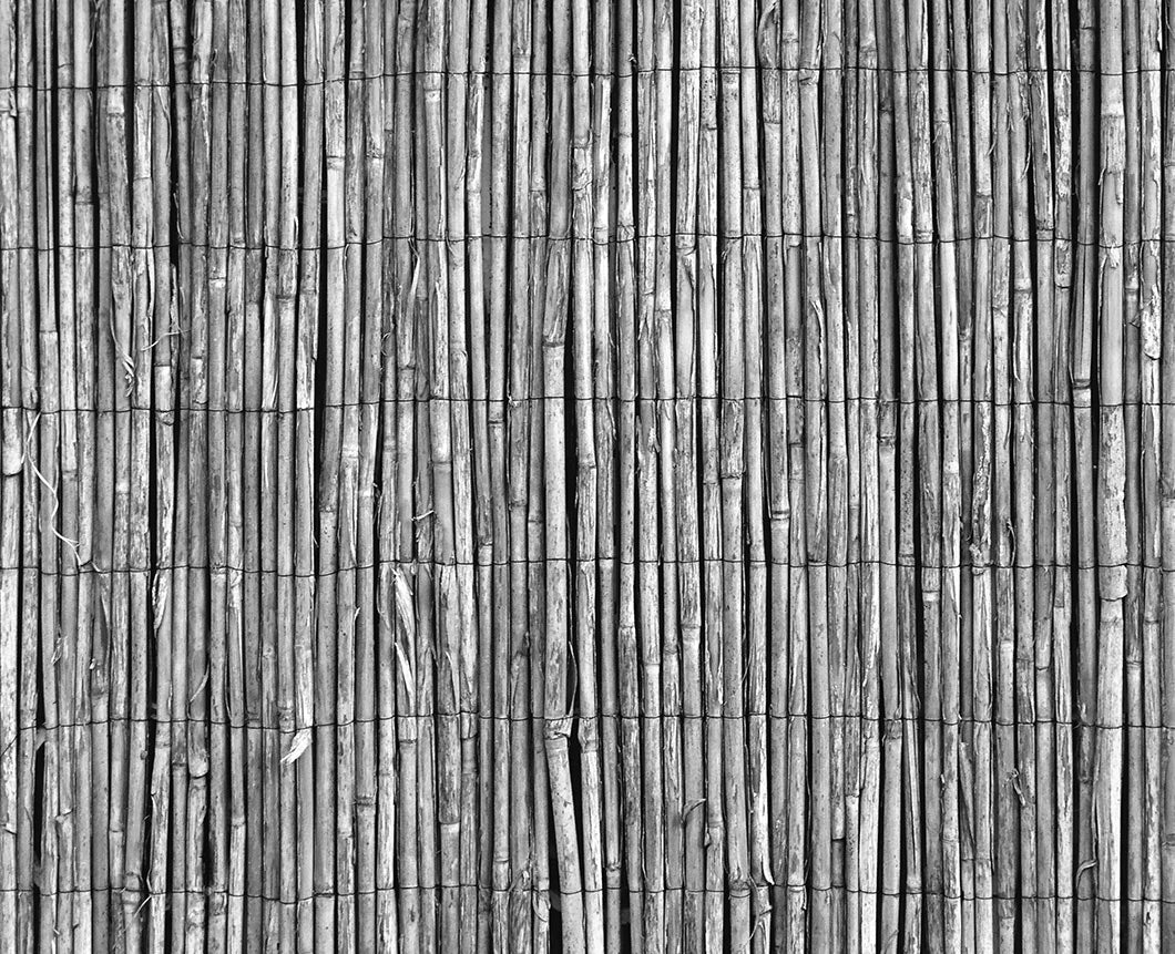 8 mind-blowing uses for Bamboo