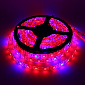 5 M Full Spectrum LED Strip Light 300 LEDs 5050 Chip Lights