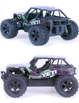 2.4G alloy big foot off-road climbing car 1:20 foreign trade small package RC CAR remote control toy car