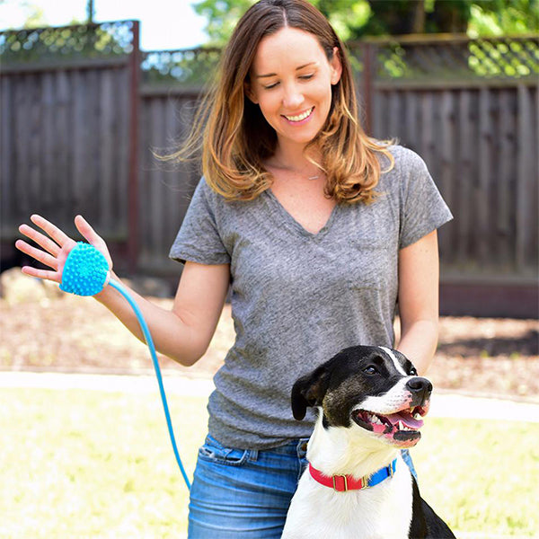 Pet Bathing Tool - Pet Shower Sprayer and Scrubber in-One