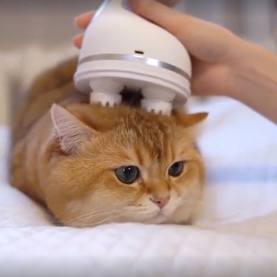 【Limited Time Sale】AMAZING 3D KNEADING HEAD MASSAGER SUITABLE FOR CAT AND HUMAN