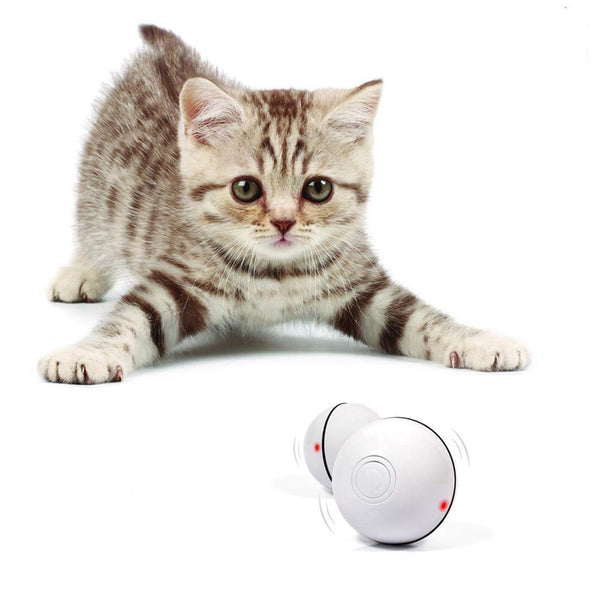 USB Electric Pet Toys Magic Roller Ball LED Rolling Flash Ball Automatic Rotating Toy