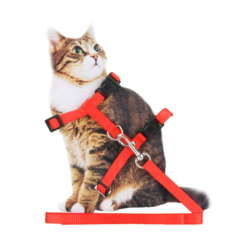 【BUY 1 GET 1 FREE】Pet Cat Rabbit Harness   Nylon Outdoor Collar Chest Strap Traction Harness For Cat Pet Supplies