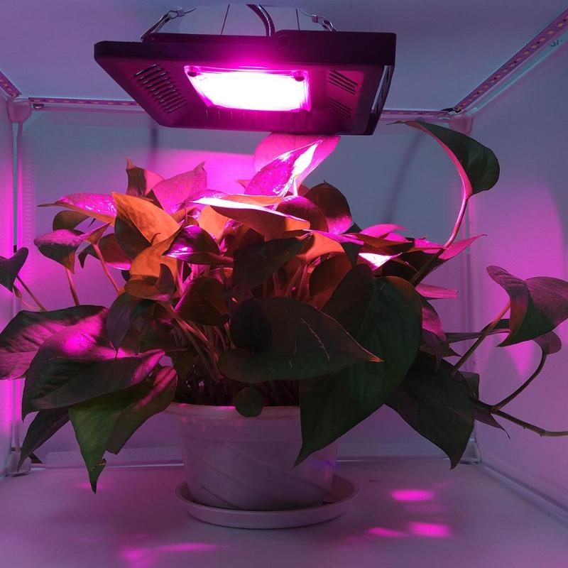 AC 220V COB LED Full Spectrum Plant Growth Lamp IP65 Waterproof Grow Light