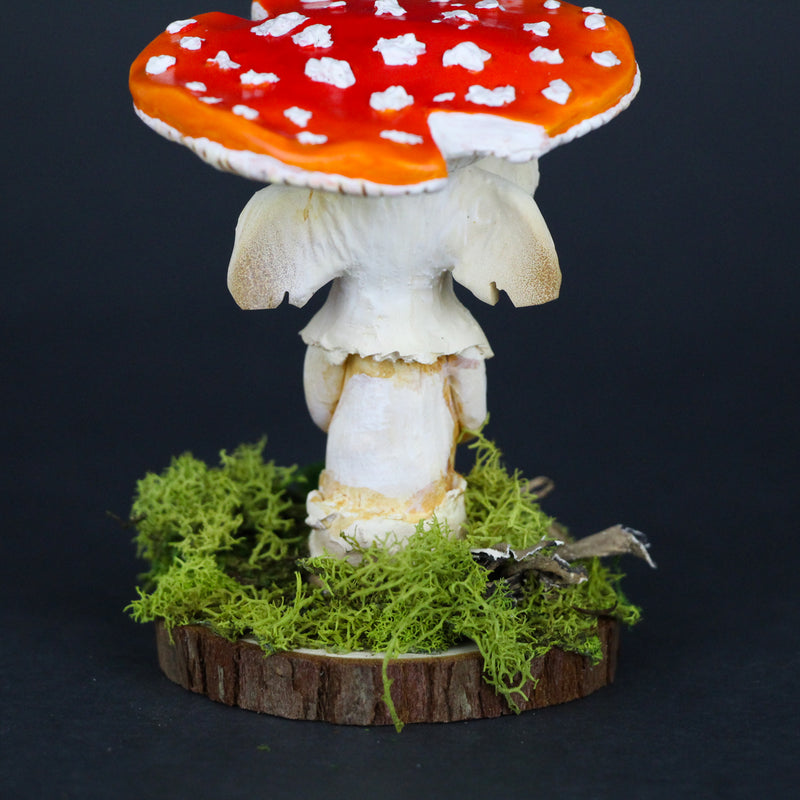 Melodor the Elder Amanita Mushling