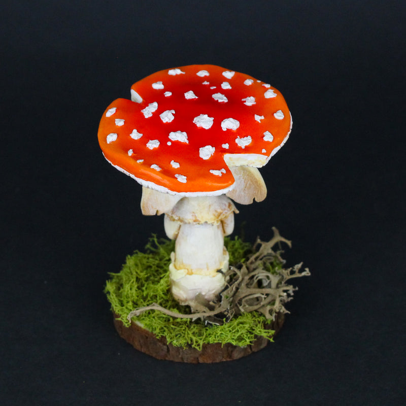 Mirin the Elder Amanita Mushling