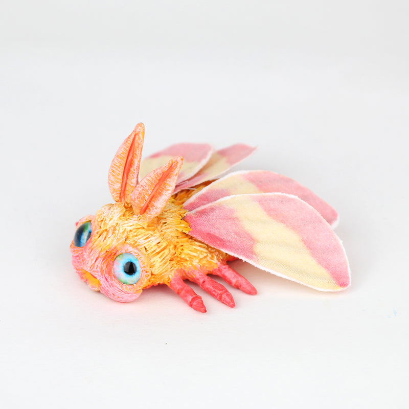 Rosy the Faerie Rosy Maple Moth