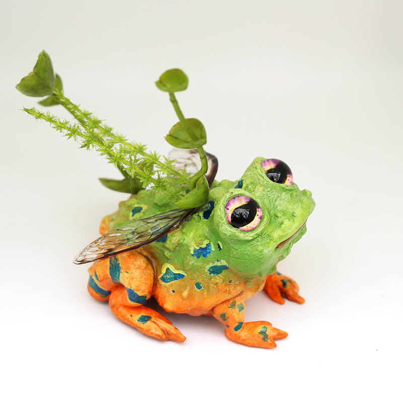 Toavis the Faerie Toad