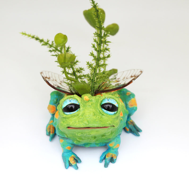 Toabias the Faerie Toad