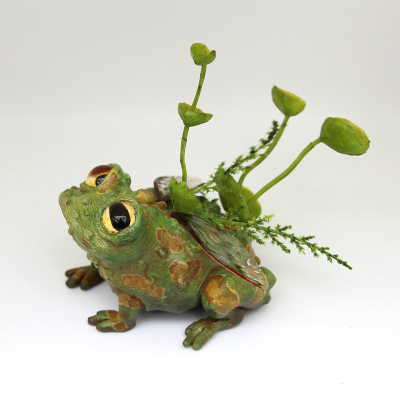 Toaby the Faerie Toad