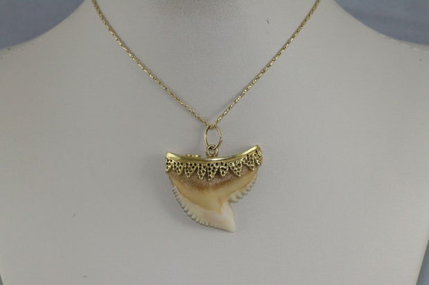 18K Yellow Gold Corletto Shark Tooth Pendant