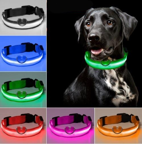 PETZZ™ Glow In The Dark Halsband