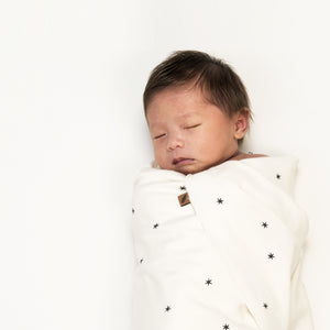 Organic Swaddle Blanket Set - Star + Stripe