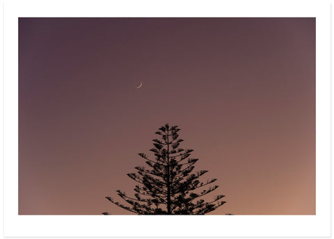 New Moon New Day