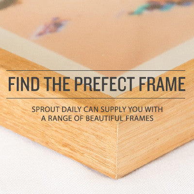 With a range of beautiful frames it's not hard to find the perfect frame for your prints.