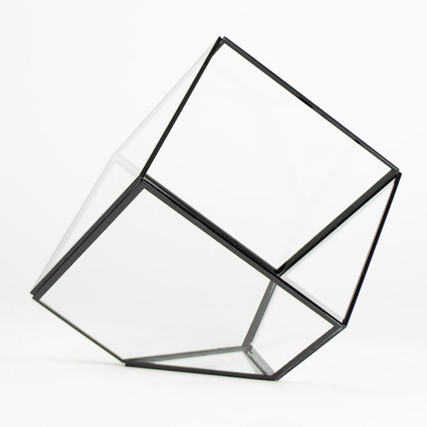 Clear Glass Cube Geometric Terrarium