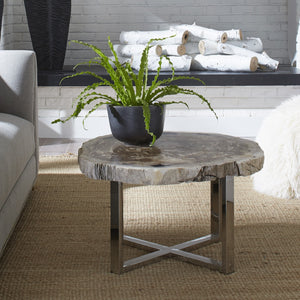 Pero Petrified Wood Coffee Table I