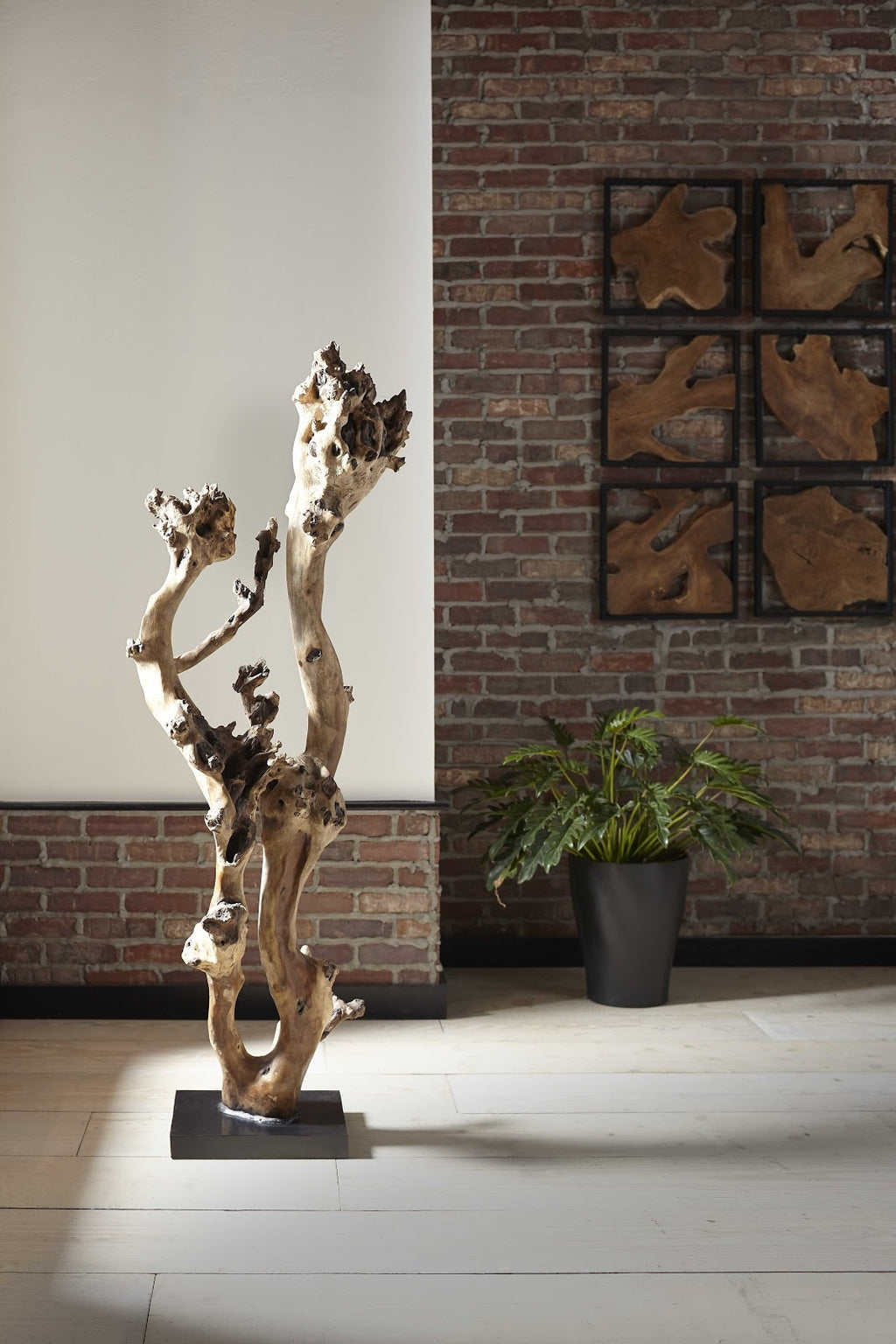 Sonokeling Tree Floor Sculpture