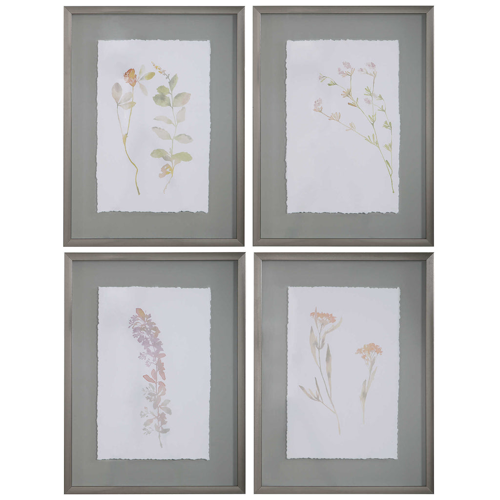 Forrest Framed Prints, Set of 4