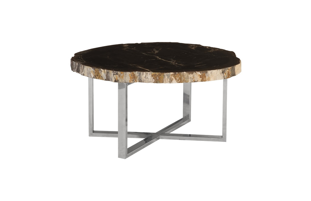 Pero Petrified Wood Coffee Table (Black)