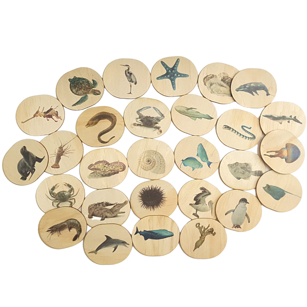 Sea Life Themed Magnets