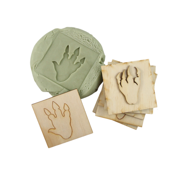 Dino Feet Stamp Packs