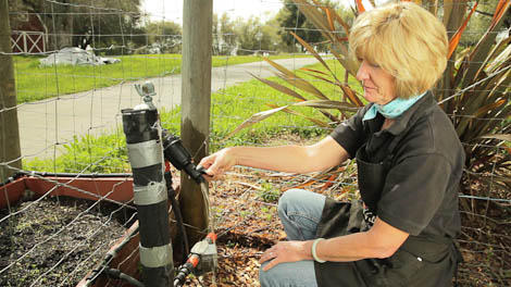 How to Maintain Your Drip Irrigation System