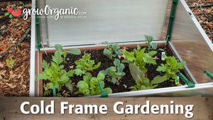 Cold Frame and Hotbed Gardening