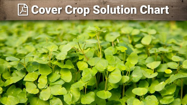 Cover Crop Solution Chart