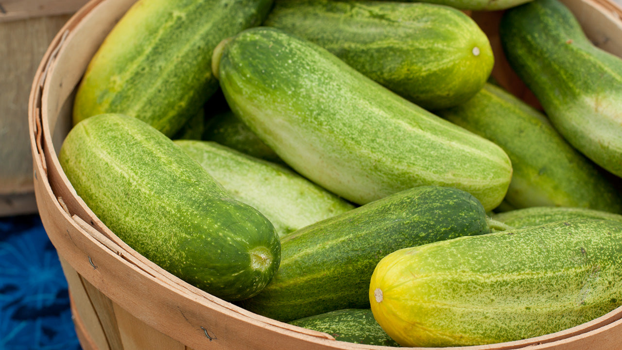 What to Do About Bitter Cucumbers